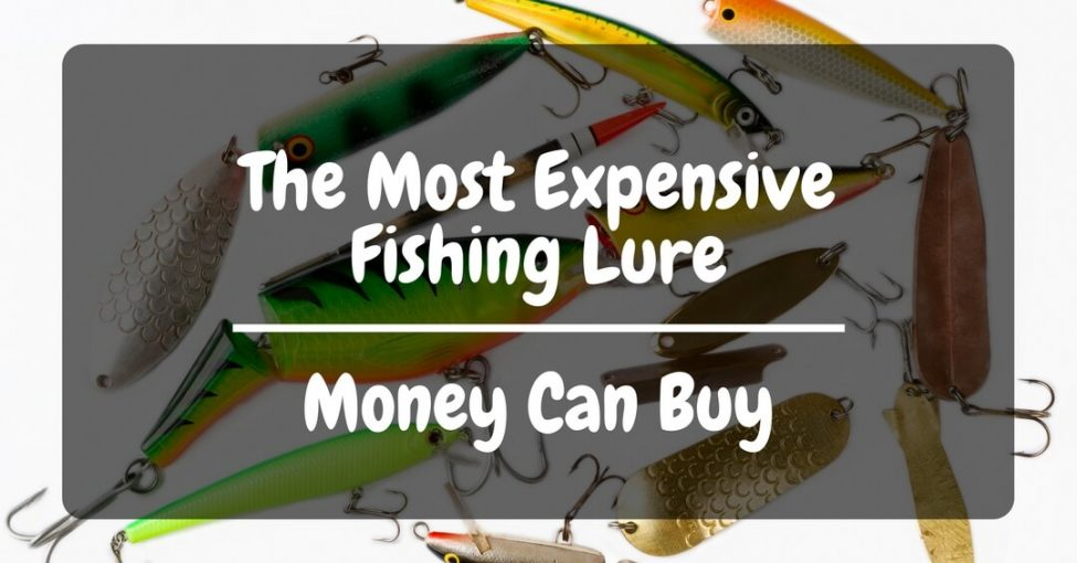 Most expensive fishing lure for fishing lovers