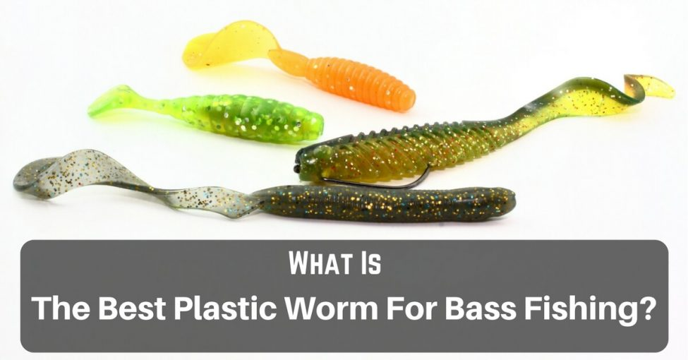 plastic worms for bass fishing